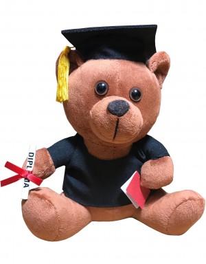 Graduation Teddy Bär