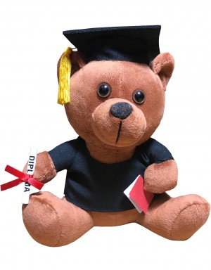 Graduation Teddy Bär